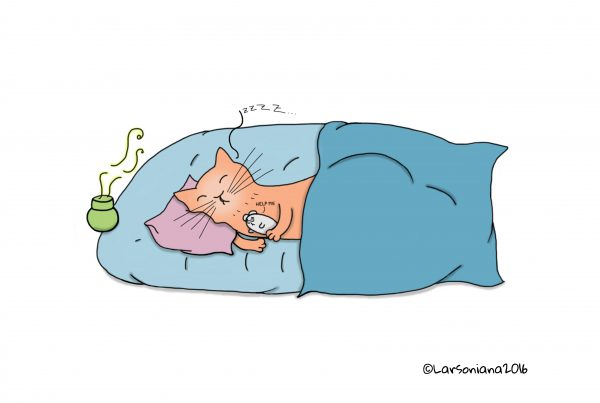 anteprima-stress-gatto