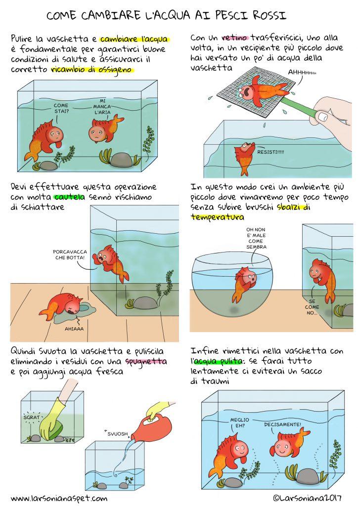 cambiare acqua pesce